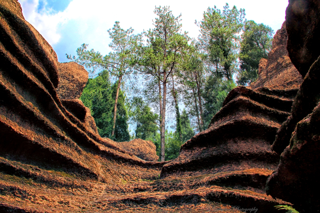 Red Rocks Forest, Zhangjiajie, China – part1