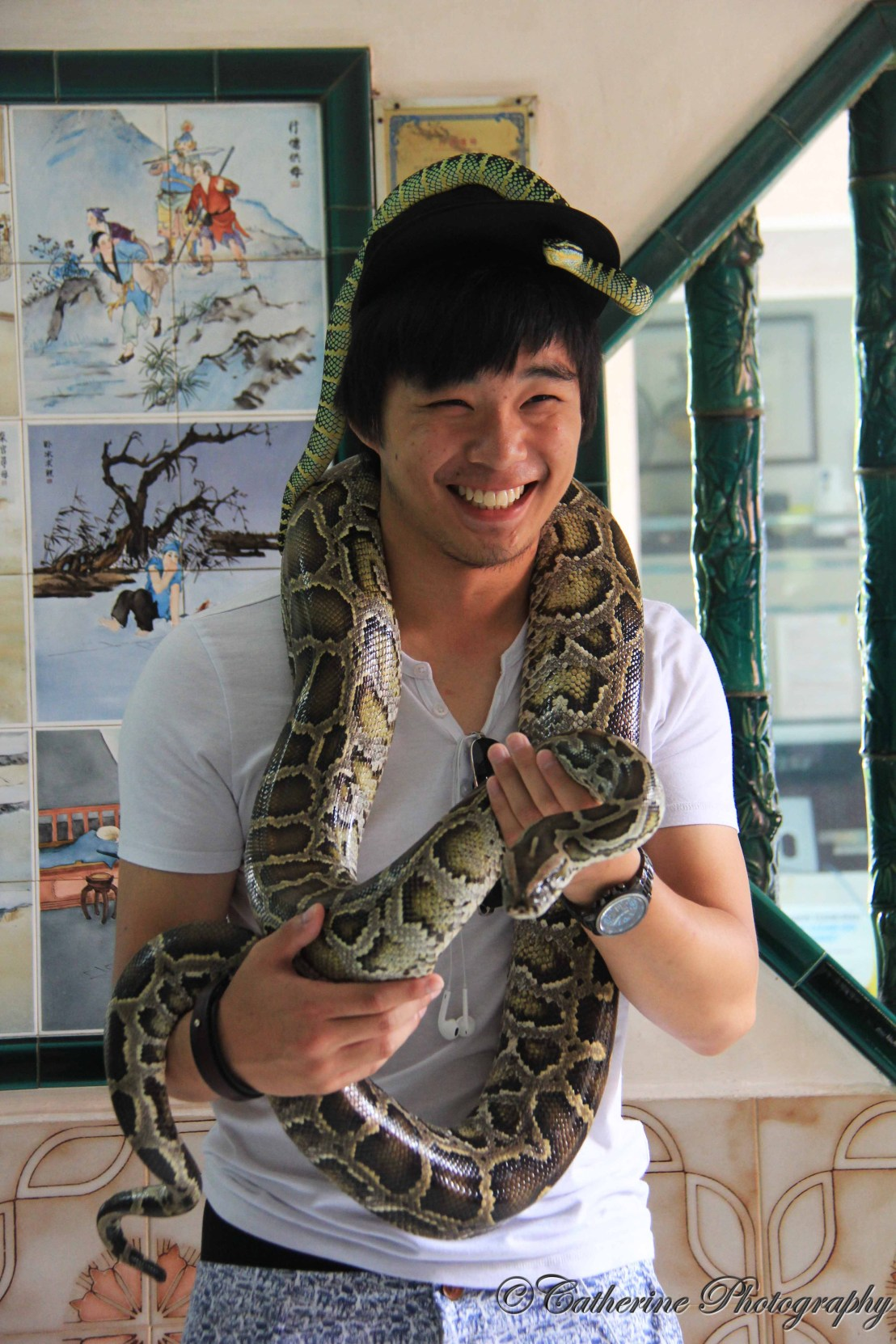 Snake Temple (蛇庙),Penang