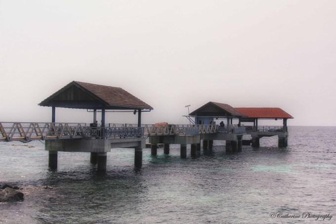 IMG_6946.1_edited-1